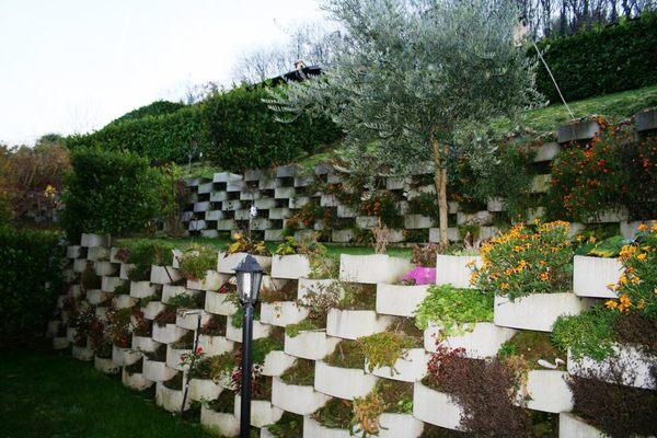 11 giardino - UNIFAM. GEMELLARE/BIFAM. GERMIGNAGA (VA)