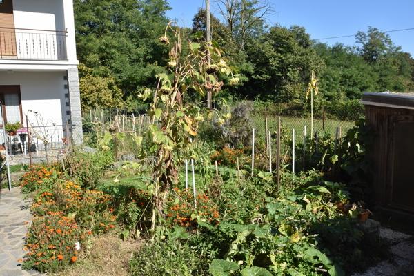 giardino in uso escl.01_10 - APPARTAMENTO LUINO (VA) VOLDOMINO SUP.