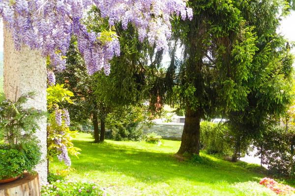 02-3 giardino_06 - VILLA MONTEGRINO VALTRAVAGLIA (VA) BOSCO VALTRAVAGLIA