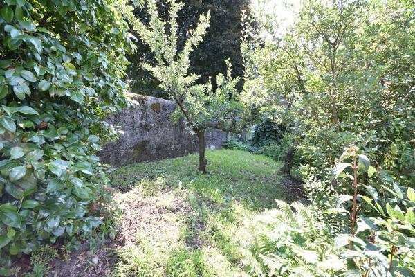 15-2 giardino fronte casa_34 - VILLA CASTELVECCANA (VA) SAN PIETRO