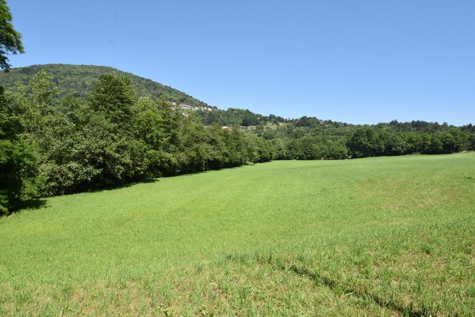terreno agricolo LUINO (VA)